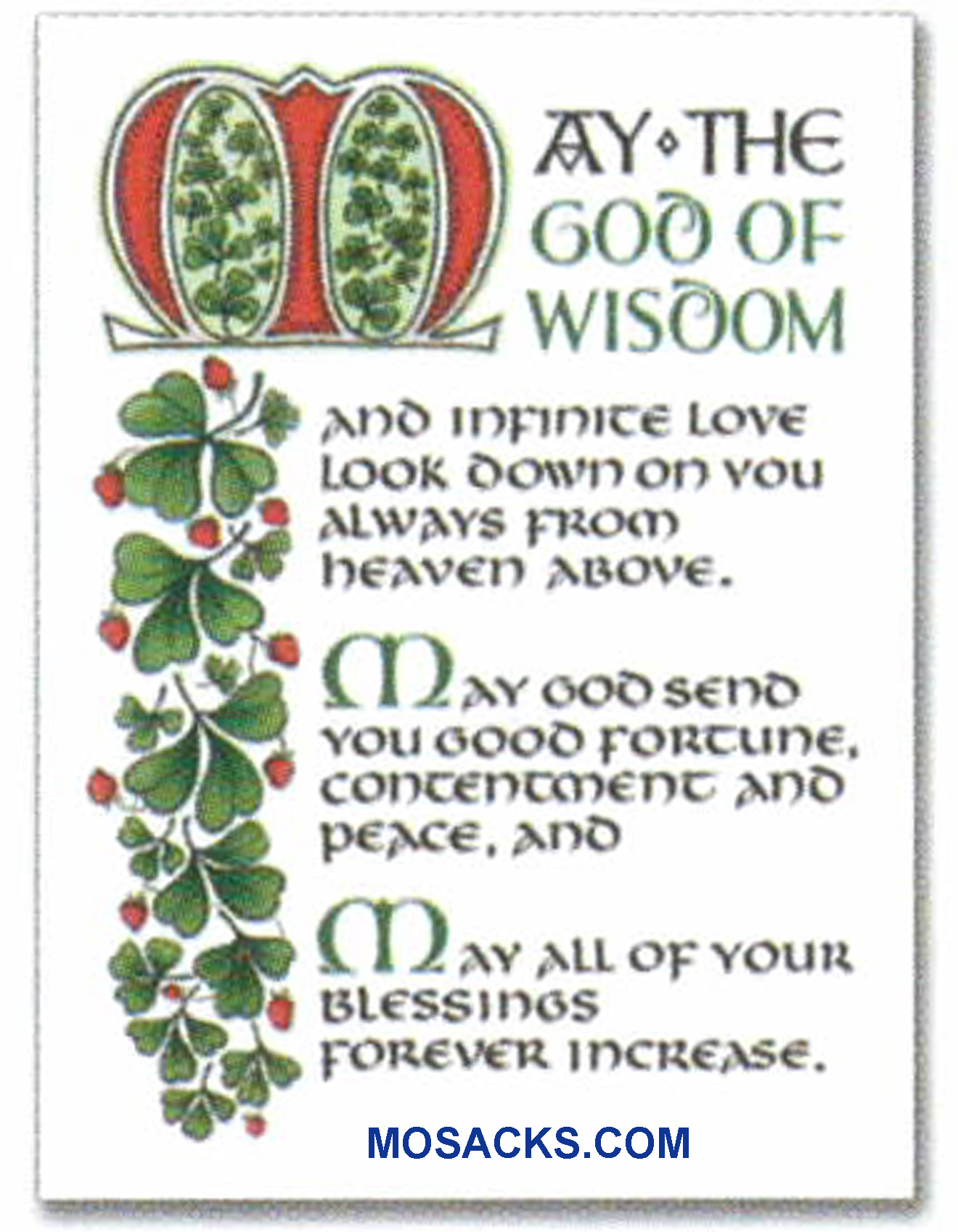 An Irish Blessing Note Card-WCA8153