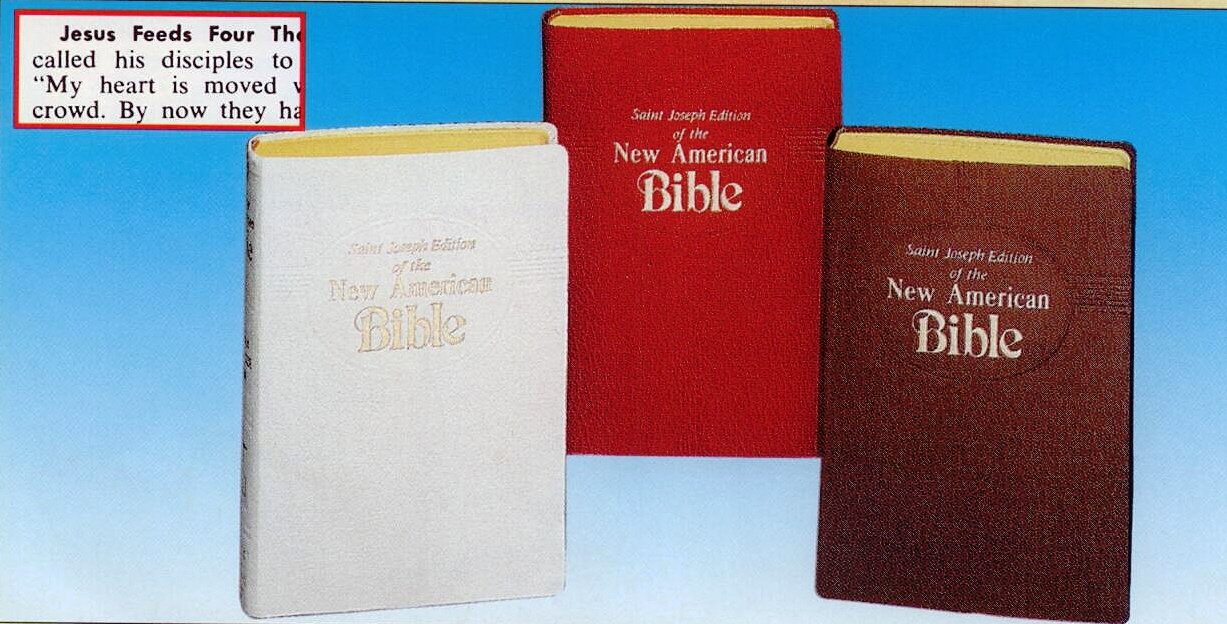 St. Joseph New American Bible, NABRE,Medium Size, Imitation Leather 609/10
