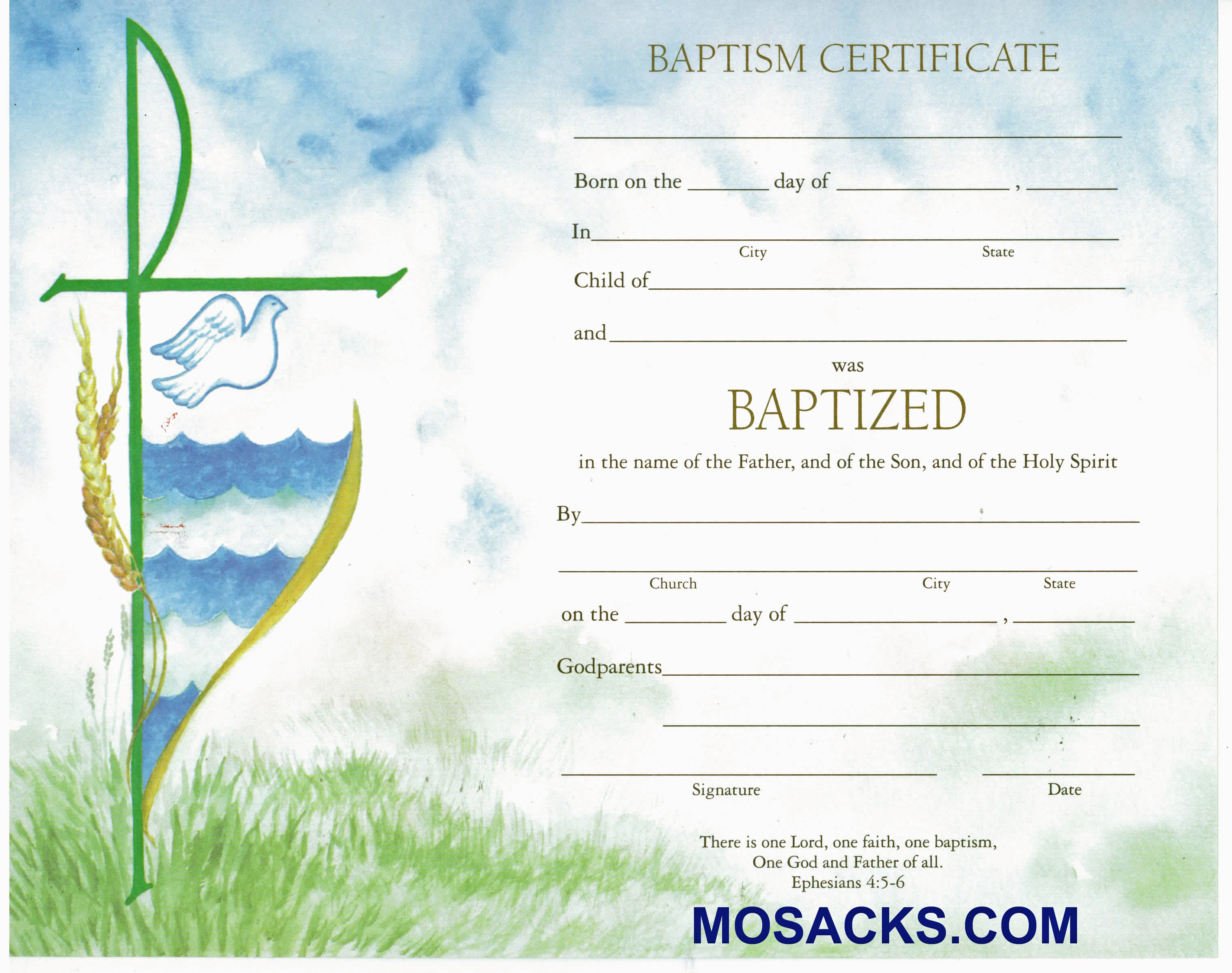 Baptism Certificate-XD102B