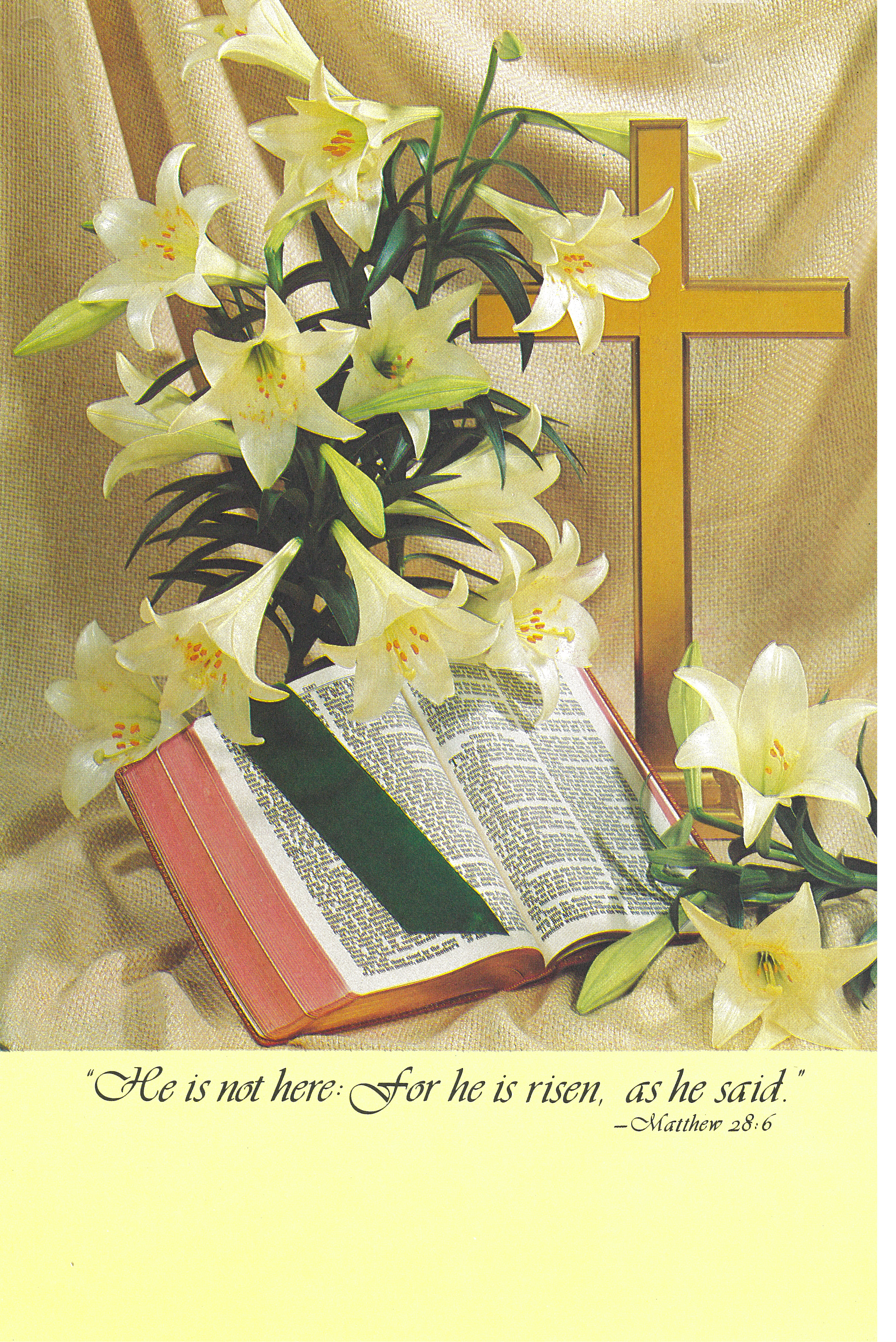Bulletin Cover Easter He Is Not Here-U1715