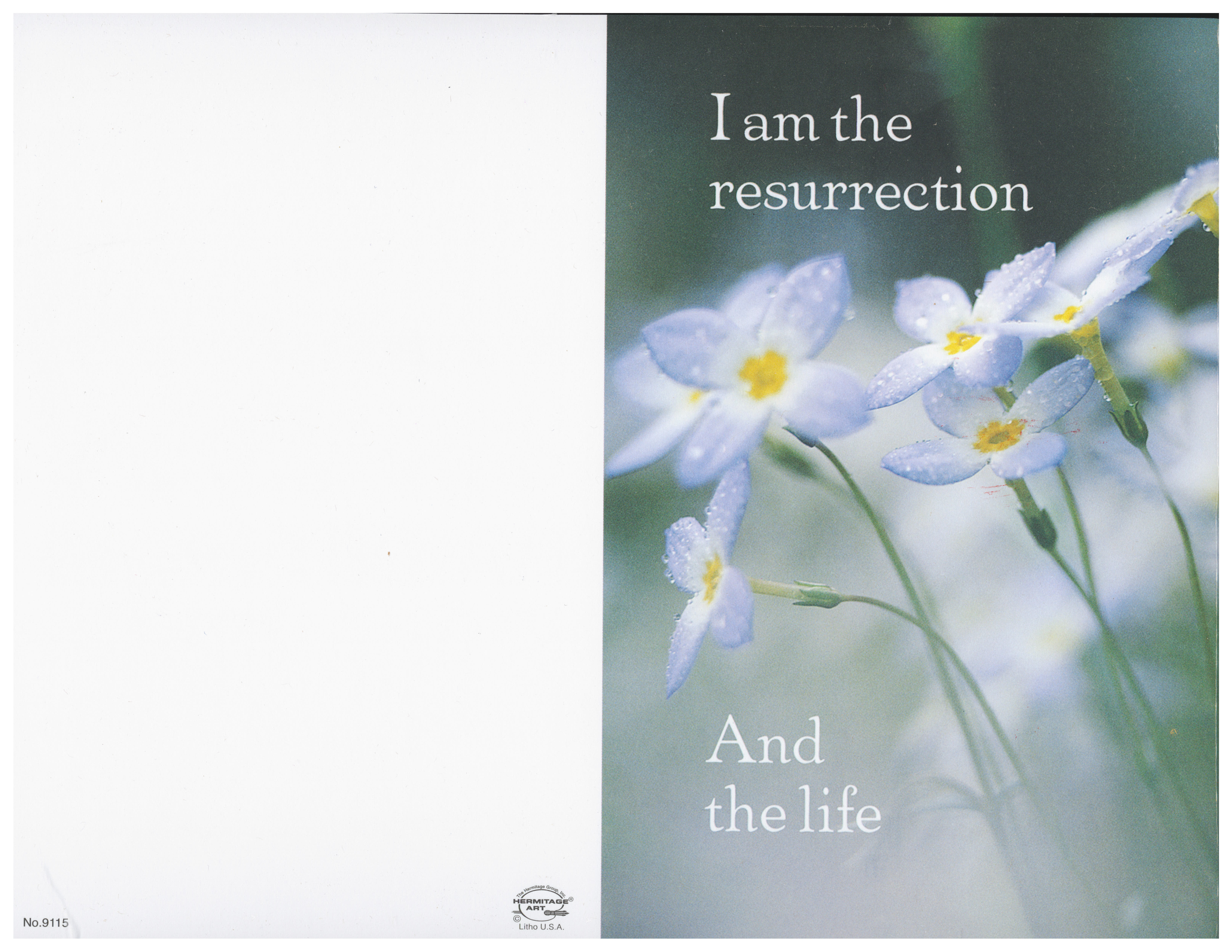 Bulletin Cover Daisies I Am The Resurrection and the Life -9115