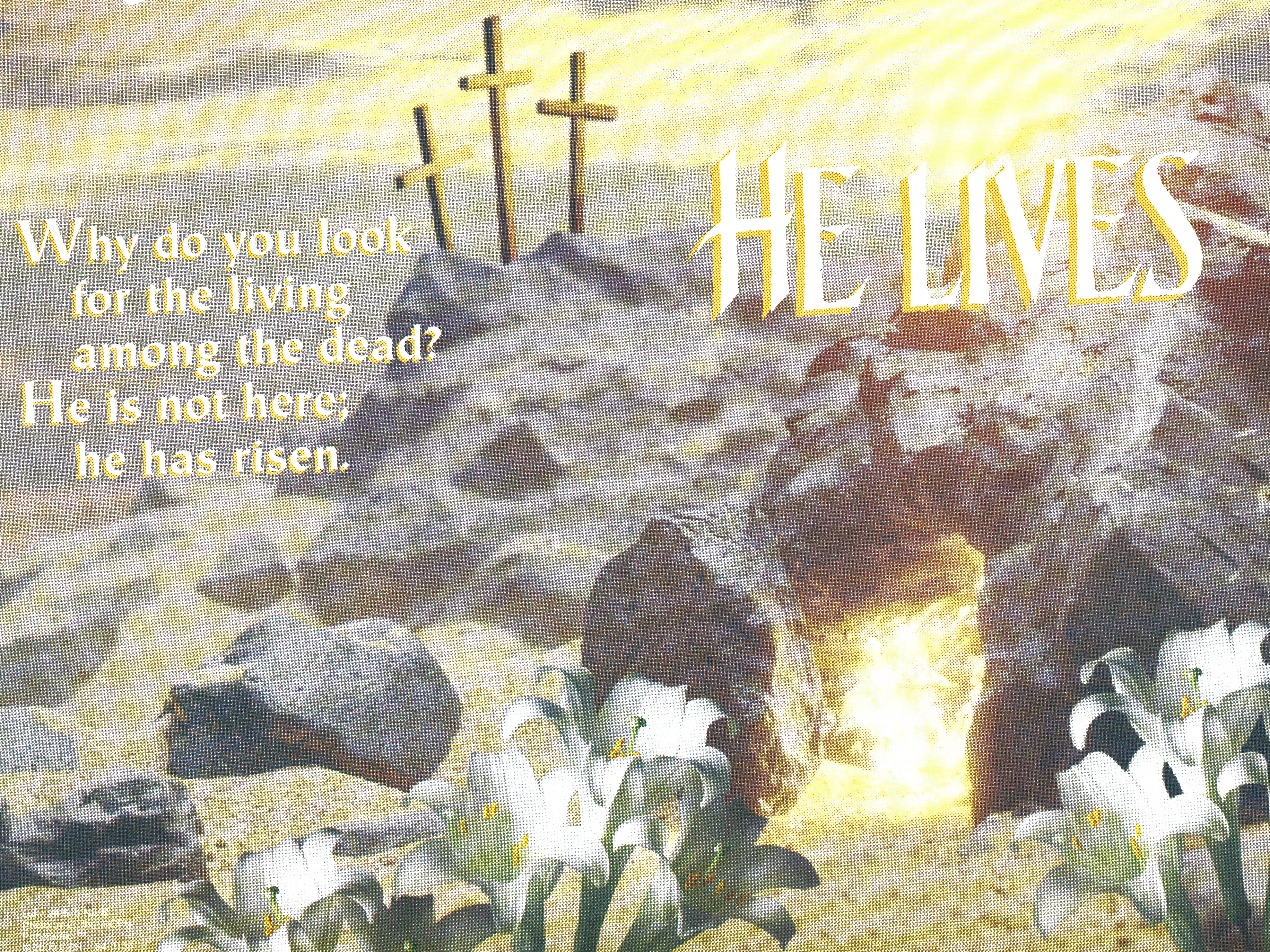 Bulletin Covers Easter He Lives-84-0135