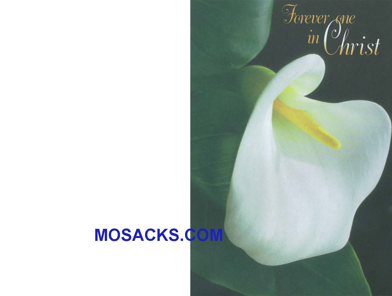 Bulletin Cover Forever One In Christ 100 Pack-A5776