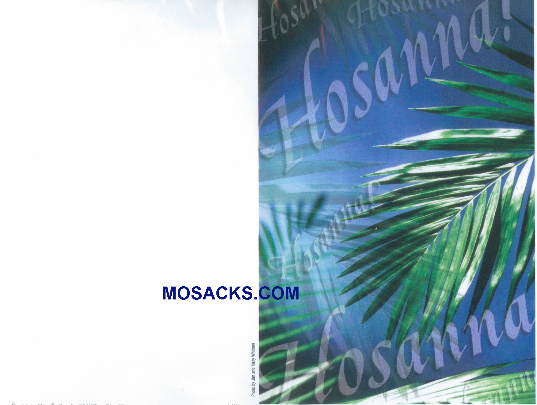 Bulletin Covers Hosanna 100 Pack-A4119, Lent Cover