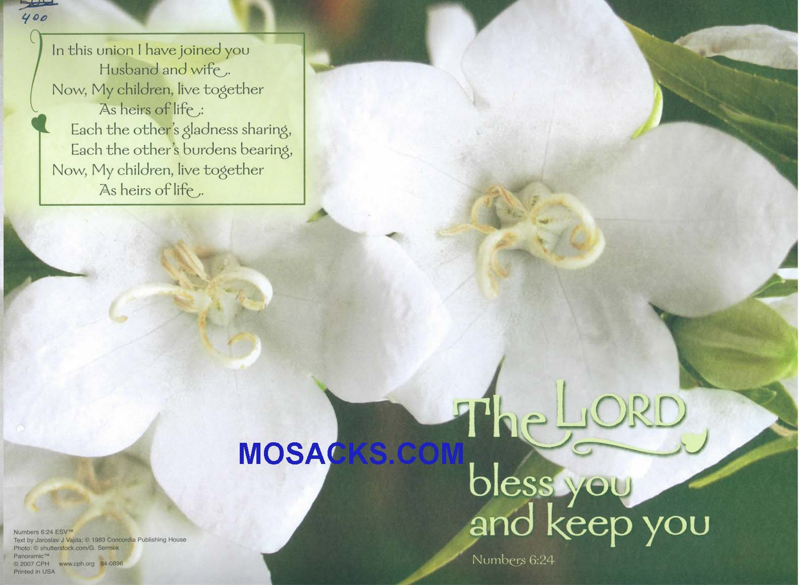 Bulletin Cover Lord Bless And Keep You 100 Pack-84-0896