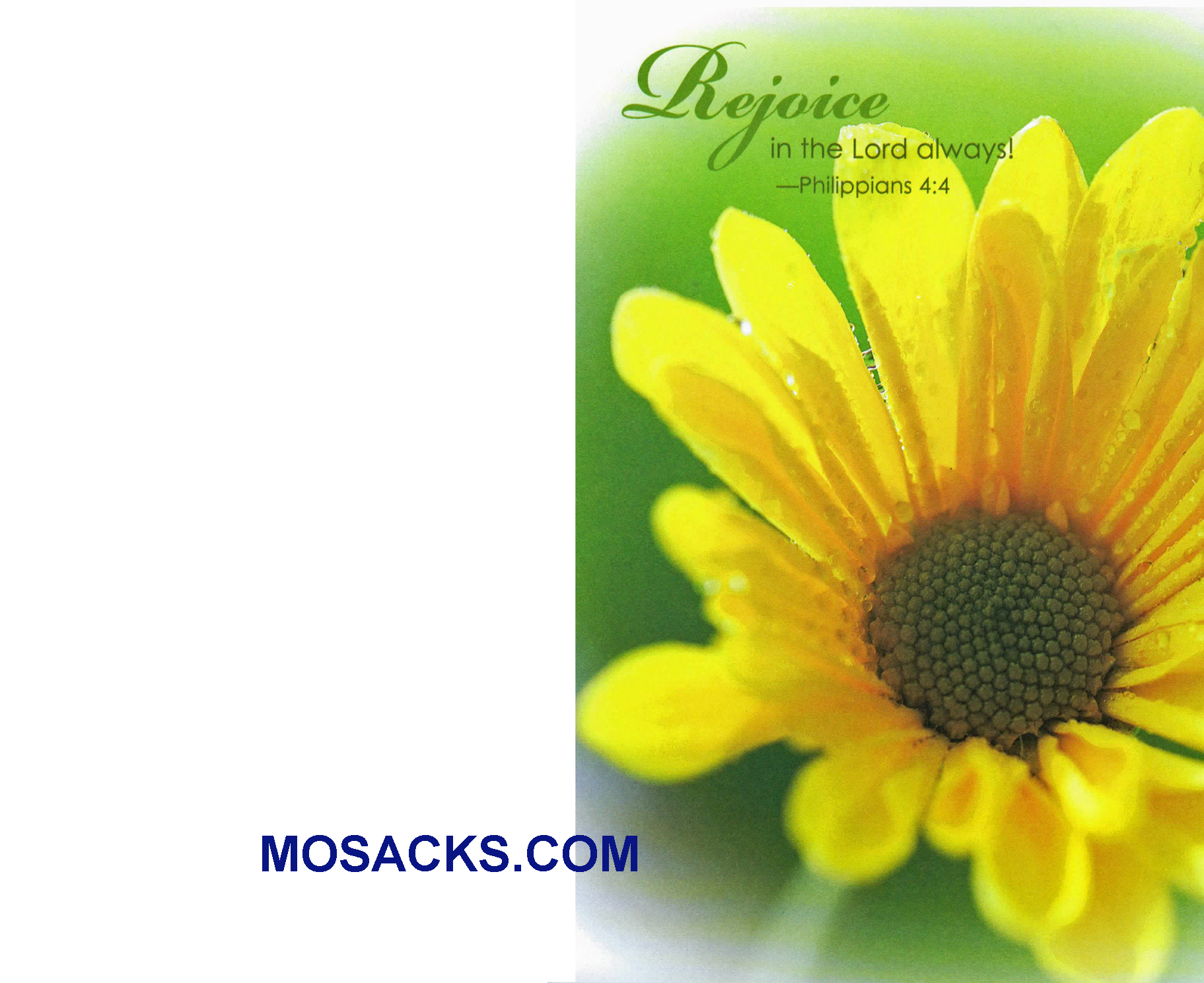 Bulletin Covers Rejoice In The Lord Always 100 Pack-08140705621, General Cover
