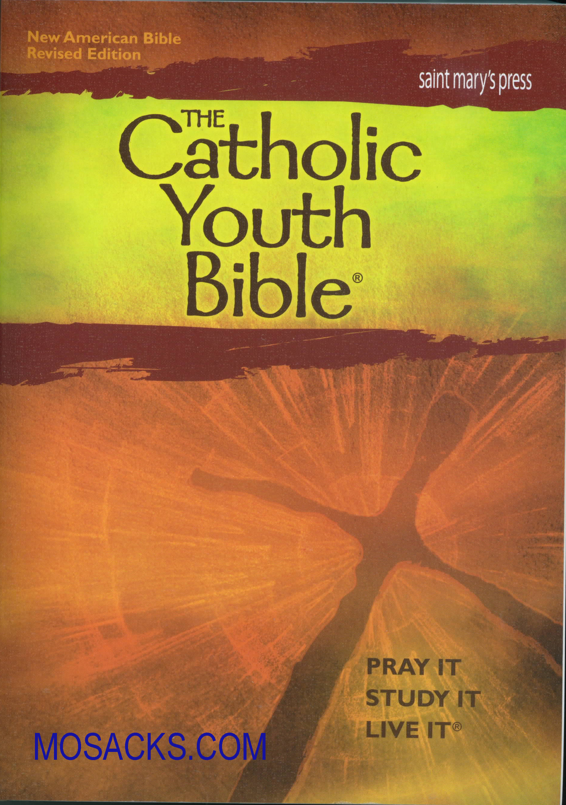 Catholic Youth Bible (NABRE) (Paperback) 69-9781599821412