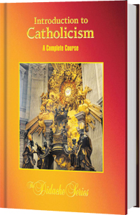 Didache Series Intro to Catholicism Complete Course by James Socias 45617