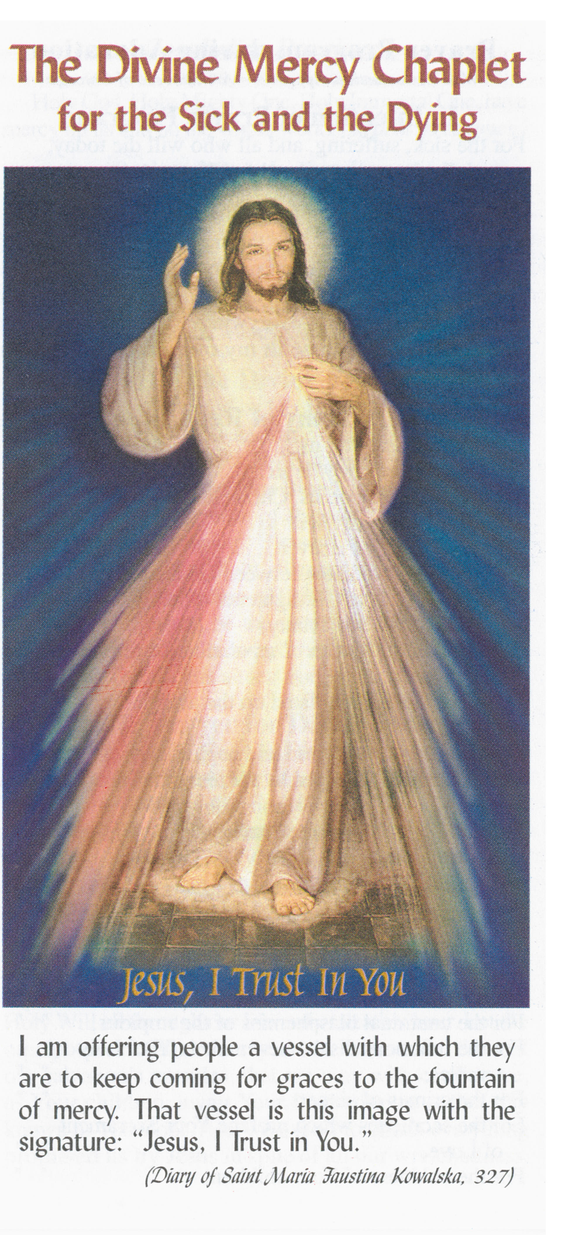 Divine Mercy Chaplet for the Sick and the Dying CSDEA 9781596140110