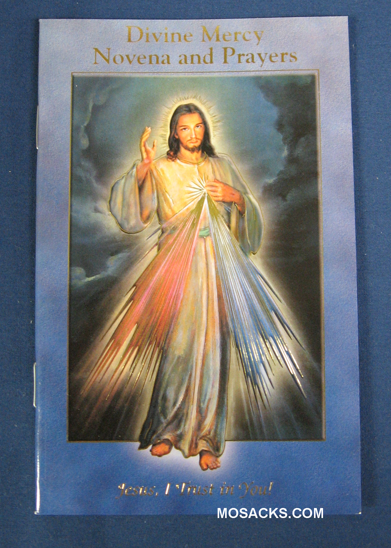 Divine Mercy Novena And Prayers Booklet 12-2432-123