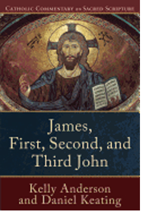 James, First, Second, and Third John by Kelly Anderson 108-9780801049224
