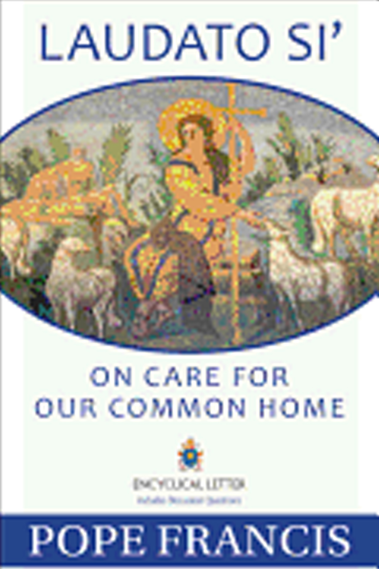 Laudato Si On Care For Our Common Home by Pope Francis 9781612783864