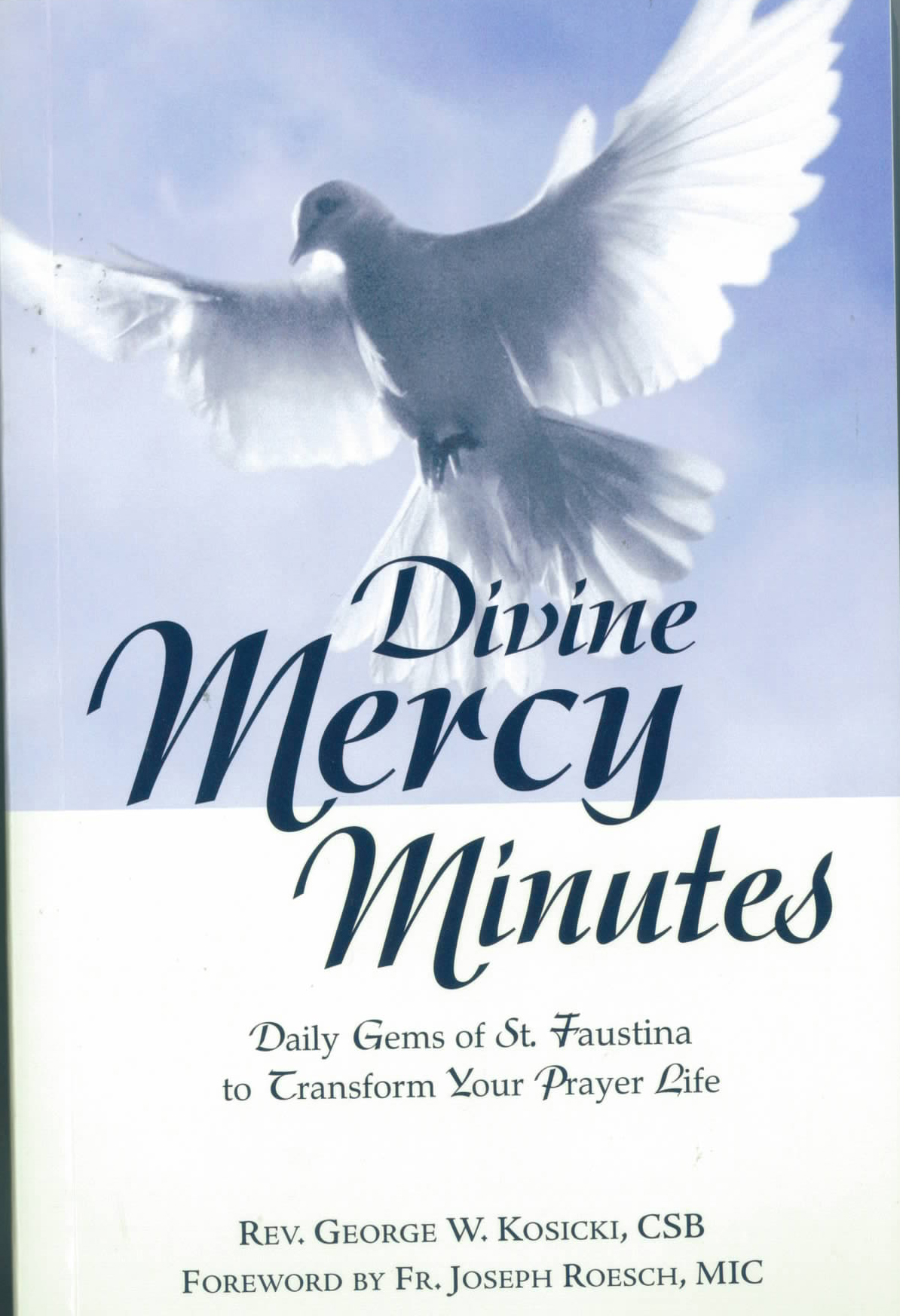 Divine Mercy Minutes Daily Gems of St. Faustina 9781596142008 Marian Press