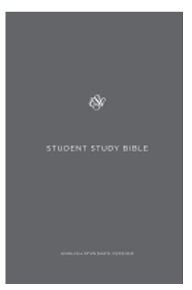 Student Study Bible ESV Gray Hardcover 9781433548055