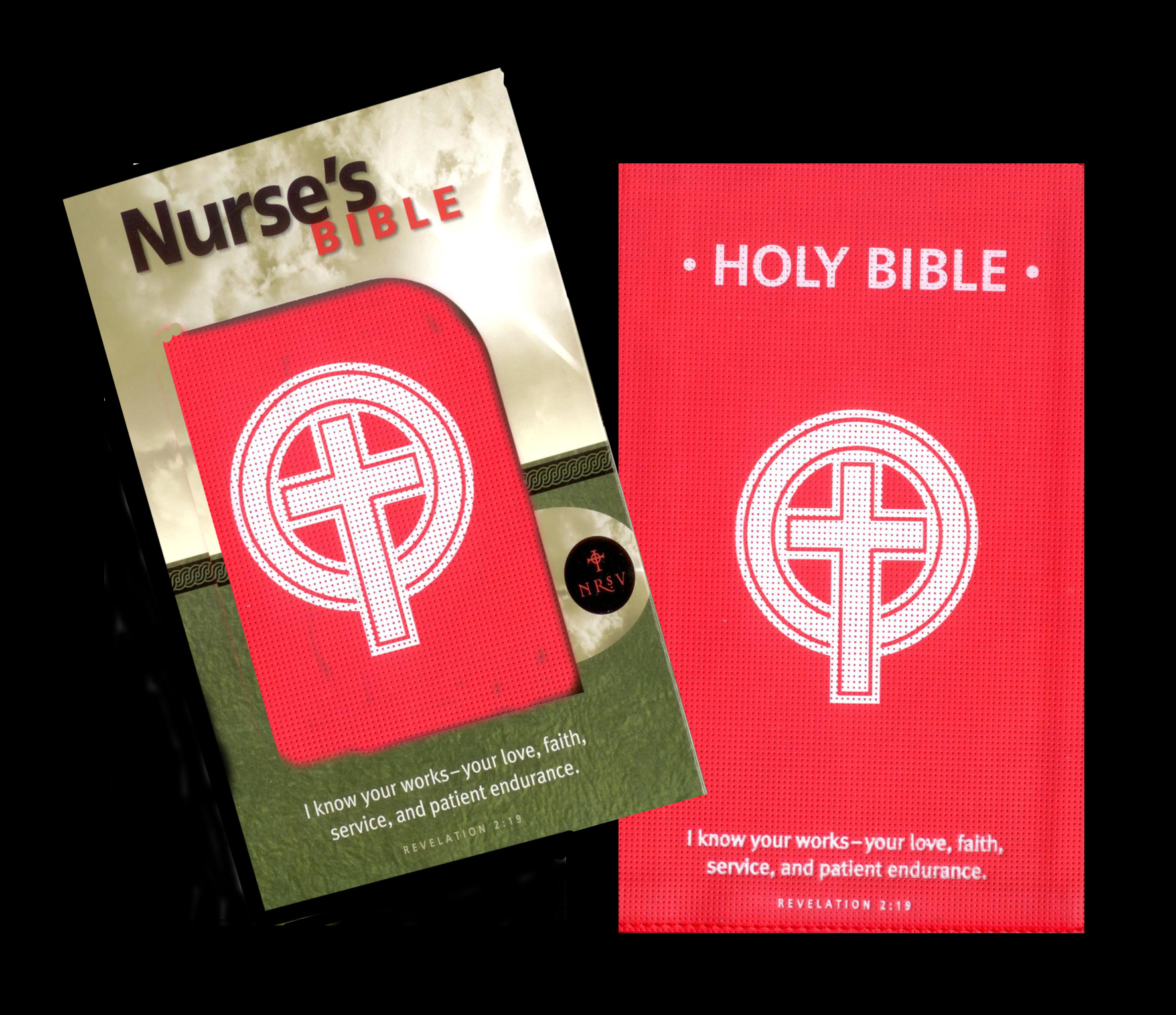 The Nurse's Bible from Abingdon Press