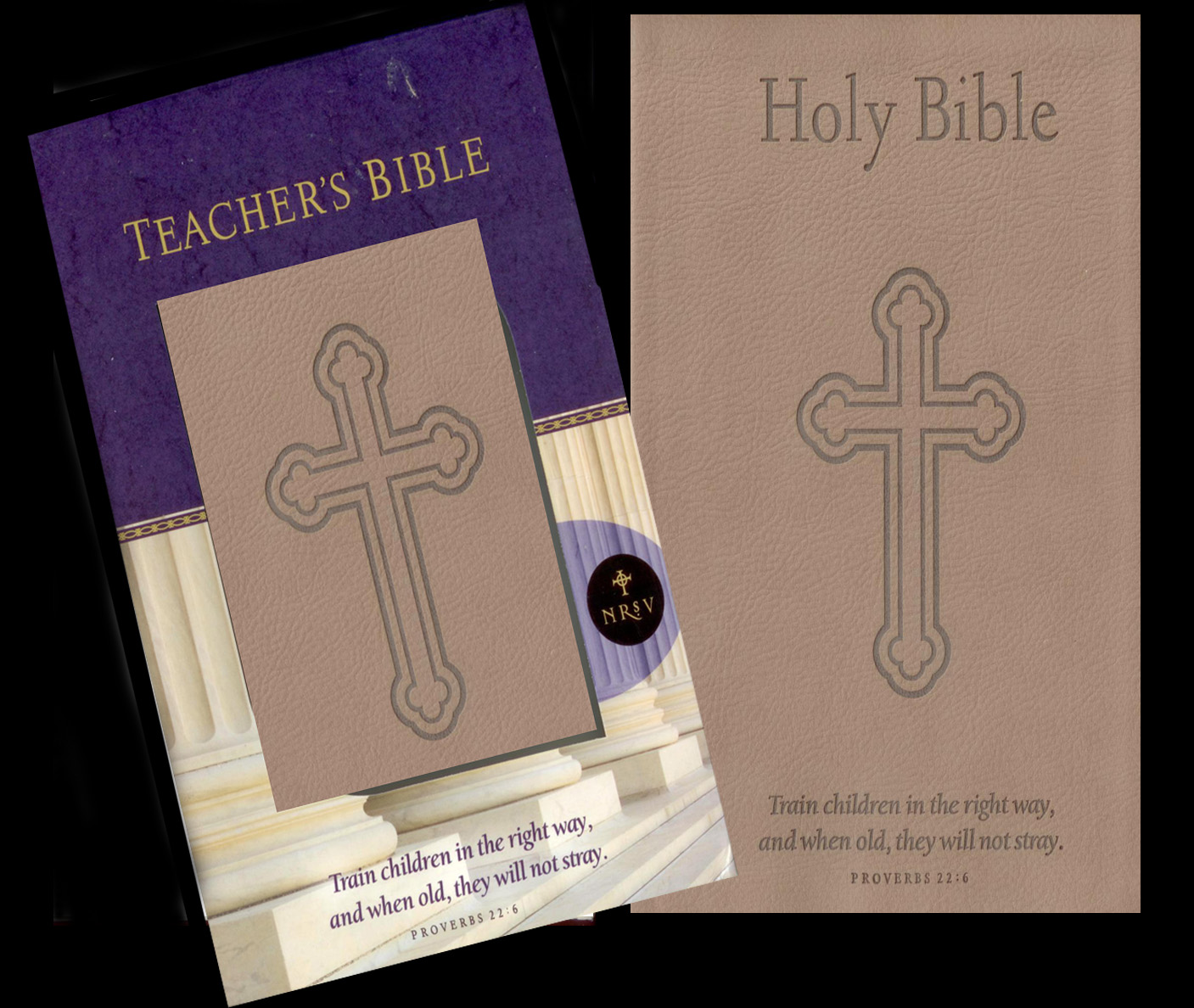 The Teacher's Bible from Abingdon Press
